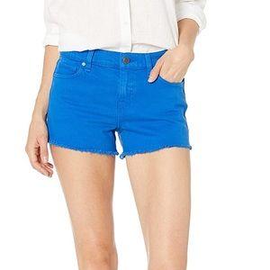 Hudson Gemma midrise jean shorts 27